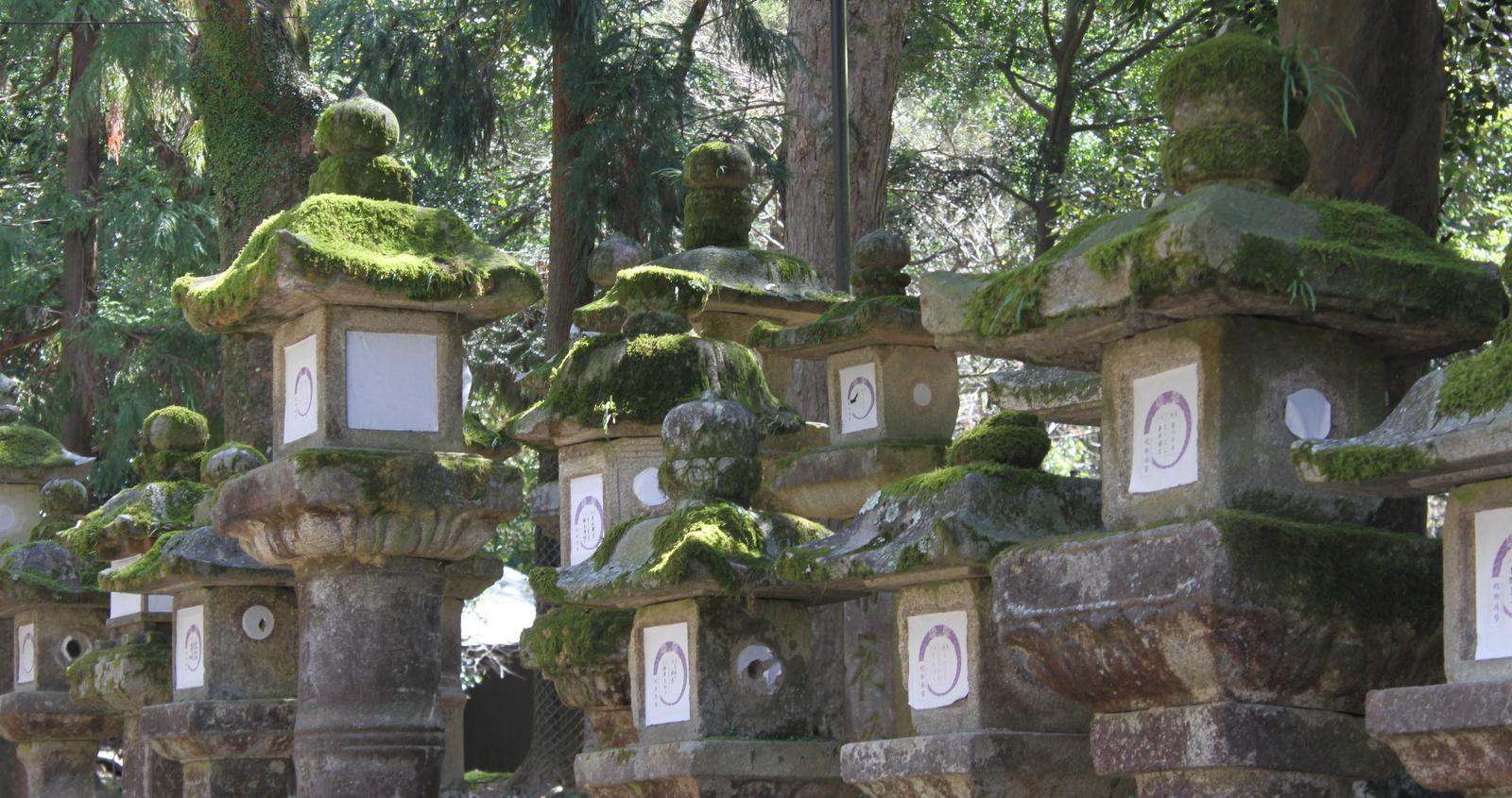 Steinerne Tempellampen in Nara
