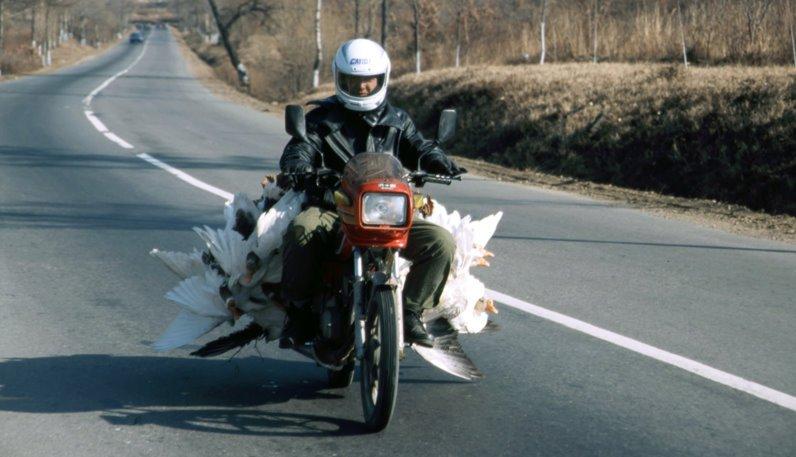 Nordasien 1999 (58)